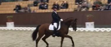 Hestefoder- dansk kvalitet – M M HESTEFODER  og  HORSELUX HESTEFODER