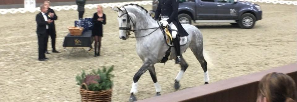 Hestefoder af dansk kvalitet – M M HESTEFODER  og  HORSELUX HESTEFODER